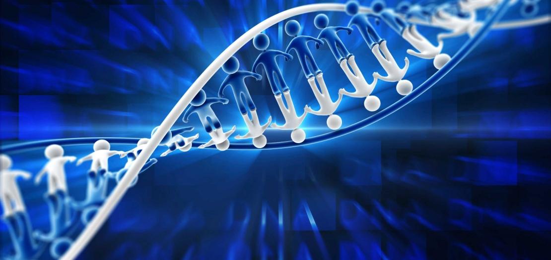 altering human genome essay