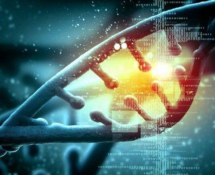 Учёные испытали уникальную вакцину против рака на основе ДНК опухоли