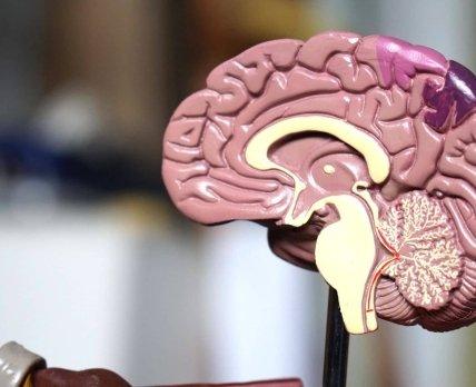 Безрецептурные нейропротекторы: пиридоксин и другие витамины группы В