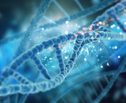Spark Therapeutics націлюється на хворобу Хантінгтона, спираючись на розробки NeuExcell /freepik