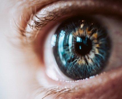 Витамины и зрение: как сохранить счастье видеть жизнь /freepik