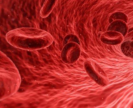 Пероральные антикоагулянты повреждают кости