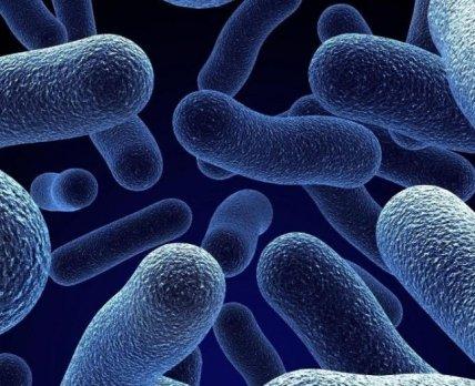 Конец эры антибиотиков: исследуем потенциал бактериофагов
